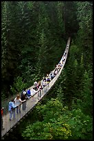 Capilano suspension bridge. Vancouver, British Columbia, Canada (color)