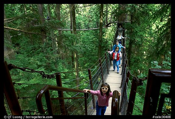 Kid on treetop trail. Vancouver, British Columbia, Canada