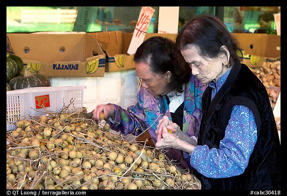 Two elderly women choosing tropical fruit. Vancouver, British Columbia, Canada (color)