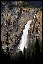 Takakkaw Falls from Yoho Valley Road, late afternoon. Yoho National Park, Canadian Rockies, British Columbia, Canada