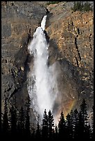 Takakaw Falls, trees and rainbow arc. Yoho National Park, Canadian Rockies, British Columbia, Canada