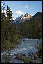 Yoho River, trees, and Cathedral Crags, late afternoon. Yoho National Park, Canadian Rockies, British Columbia, Canada (color)