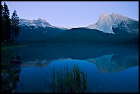 Mount Burgess and Wapta Mountain reflected in Emerald Lake, dusk. Yoho National Park, Canadian Rockies, British Columbia, Canada