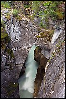 Natural bridge in Marble Canyon. Kootenay National Park, Canadian Rockies, British Columbia, Canada (color)