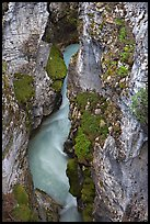 Limestone walls carved by Tokkum Creek, Marble Canyon. Kootenay National Park, Canadian Rockies, British Columbia, Canada ( color)