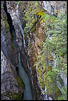 Marble Canyon 36 meter deep narrow gorge. Kootenay National Park, Canadian Rockies, British Columbia, Canada (color)
