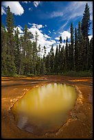 Ochre mineral pool called Paint Pot, used as a source of color by the First Nations. Kootenay National Park, Canadian Rockies, British Columbia, Canada