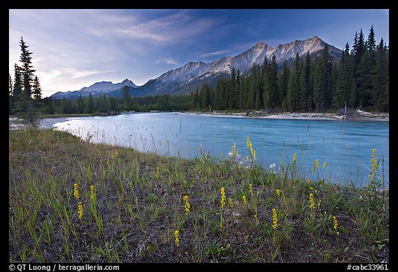Picturephoto mitchell range kootenay river and flowers sunset mitchell range kootenay river and flowers sunset kootenay national park canadian rockies british columbia canada sciox Image collections