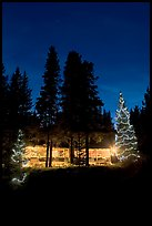 Cabin and illuminated Christmas trees at night. Kootenay National Park, Canadian Rockies, British Columbia, Canada (color)