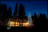 Lit Christmas trees, cabin, and forest at night. Kootenay National Park, Canadian Rockies, British Columbia, Canada (color)
