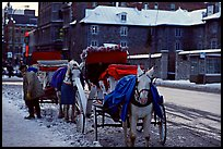 Horse carriage in winter, Montreal. Quebec, Canada