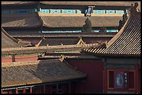 Rooftops details, Forbidden City. Beijing, China ( color)