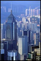 Tower buildings seen from Victoria Peak, late afternoon, Hong-Kong Island. Hong-Kong, China (color)