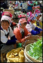 Bai women sell vegetables at the Monday market. Shaping, Yunnan, China ( color)