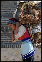 Woman carrying a load of chicken cages on forehead. Shaping, Yunnan, China