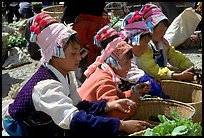 Bai women in tribal dress selling vegetables at the Monday market. Shaping, Yunnan, China ( color)