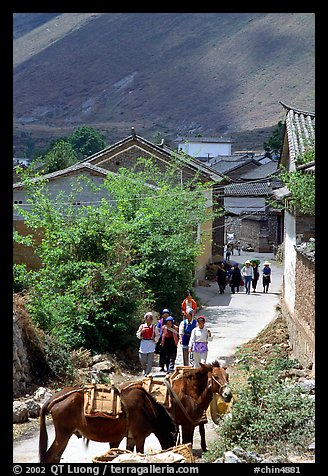 Village street leading to the market. Shaping, Yunnan, China (color)