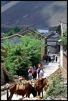 Village street leading to the market. Shaping, Yunnan, China ( color)
