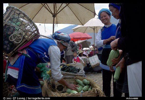 Bai tribeswomen buy vegetables at Monday market. Shaping, Yunnan, China (color)