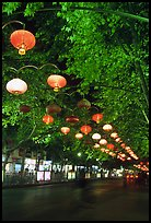Zhengyi Lu illuminated by lanterns at night. Kunming, Yunnan, China ( color)
