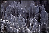 Details of grey limestone pinnacles of the Stone Forst. Shilin, Yunnan, China ( color)