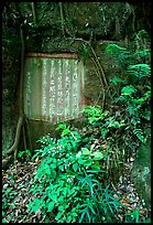 Chinese inscription in stone in the gardens of Dafo Si. Leshan, Sichuan, China