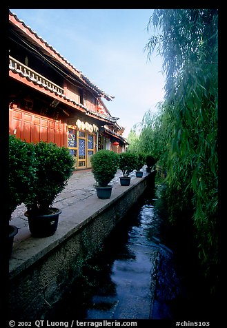 Wooden houses and vegetation near a canal. Lijiang, Yunnan, China (color)