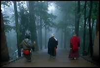 Pilgrims descend a staircase in the fog beneath Wannian Si. Emei Shan, Sichuan, China (color)