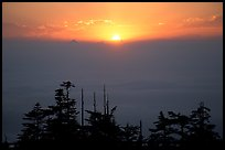 Sunset over a sea of clouds. Emei Shan, Sichuan, China