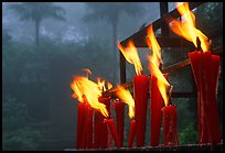 Candles burning with foggy trees in the background, Wannian Si. Emei Shan, Sichuan, China