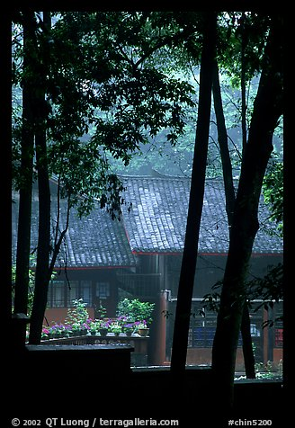 Bailongdong temple seen through trees. Emei Shan, Sichuan, China (color)