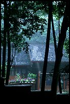 Bailongdong temple seen through trees. Emei Shan, Sichuan, China