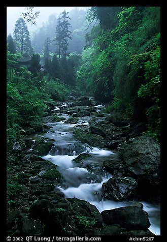 Stream between Qingyin and Hongchunping. Emei Shan, Sichuan, China (color)