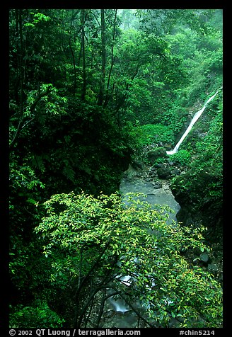 Waterfall between Qingyin and Hongchunping. Emei Shan, Sichuan, China ...