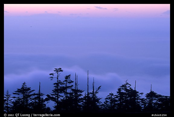Sunset on a sea of clouds. Emei Shan, Sichuan, China (color)