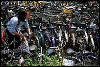 Retriving a bike in the bicycle parking lot. Chengdu, Sichuan, China (color)