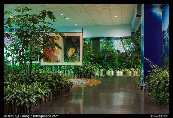 Room with plants and nature photos, Taoyuan Airport. Taiwan (color)