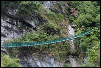 Suspension footbridge, Taroko Gorge. Taroko National Park, Taiwan (color)