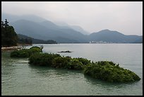 Floating gardens and misty mountains. Sun Moon Lake, Taiwan ( color)