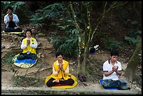 Group meditating in forest. Sun Moon Lake, Taiwan (color)