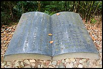 Giant book sculpture. Sun Moon Lake, Taiwan (color)