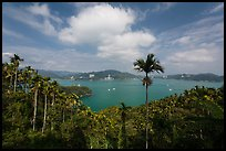 Wide view of lake with palm trees. Sun Moon Lake, Taiwan (color)