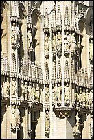 Detail of the gothic town hall. Brussels, Belgium ( color)