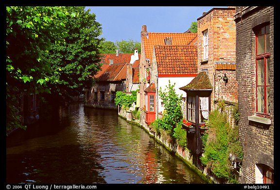 Canal lined with houses and trees. Bruges, Belgium (color)