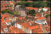 Houses and castle. Bruges, Belgium ( color)