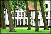Grassy square in Beguinage (Begijnhof). Bruges, Belgium ( color)