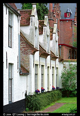 Whitewashed houses in the Beguinage. Bruges, Belgium