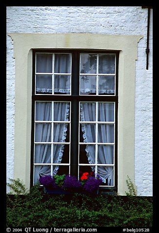 Window, Beguinage. Bruges, Belgium (color)