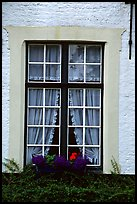 Window, Beguinage. Bruges, Belgium
