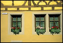 Detail of half-timbered house. Rothenburg ob der Tauber, Bavaria, Germany ( color)